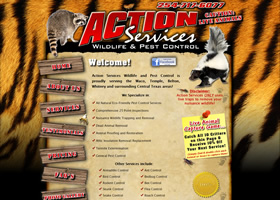 Action Services Wildlife & Pest Control - Waco, Texas
